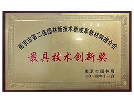 最具技术创新奖