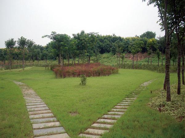竹林增压站室外景观龙8国际信誉平台龙8娱乐网页版