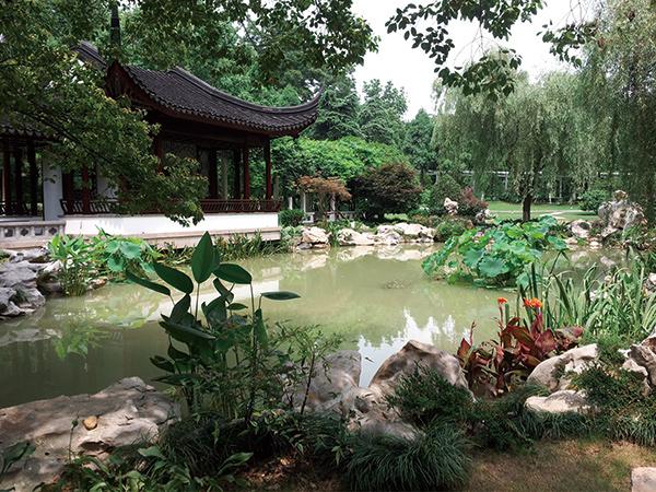 江苏省委机关大院景观改造龙8娱乐网页版